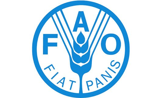 FAO to help Azerbaijan reduce food waste