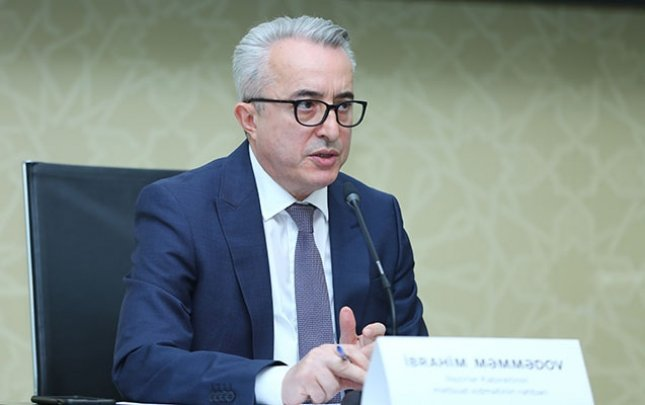 "Ibrahim Mammadov: ""Resumption of international flights don't depend just on Azerbaijan"""